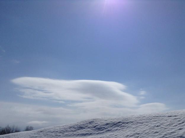 イルカの雲