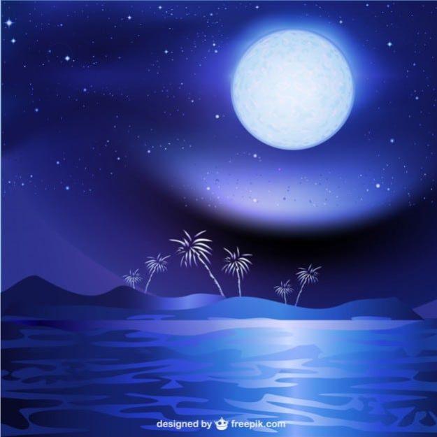 夜の海の月 freepik.com より参照