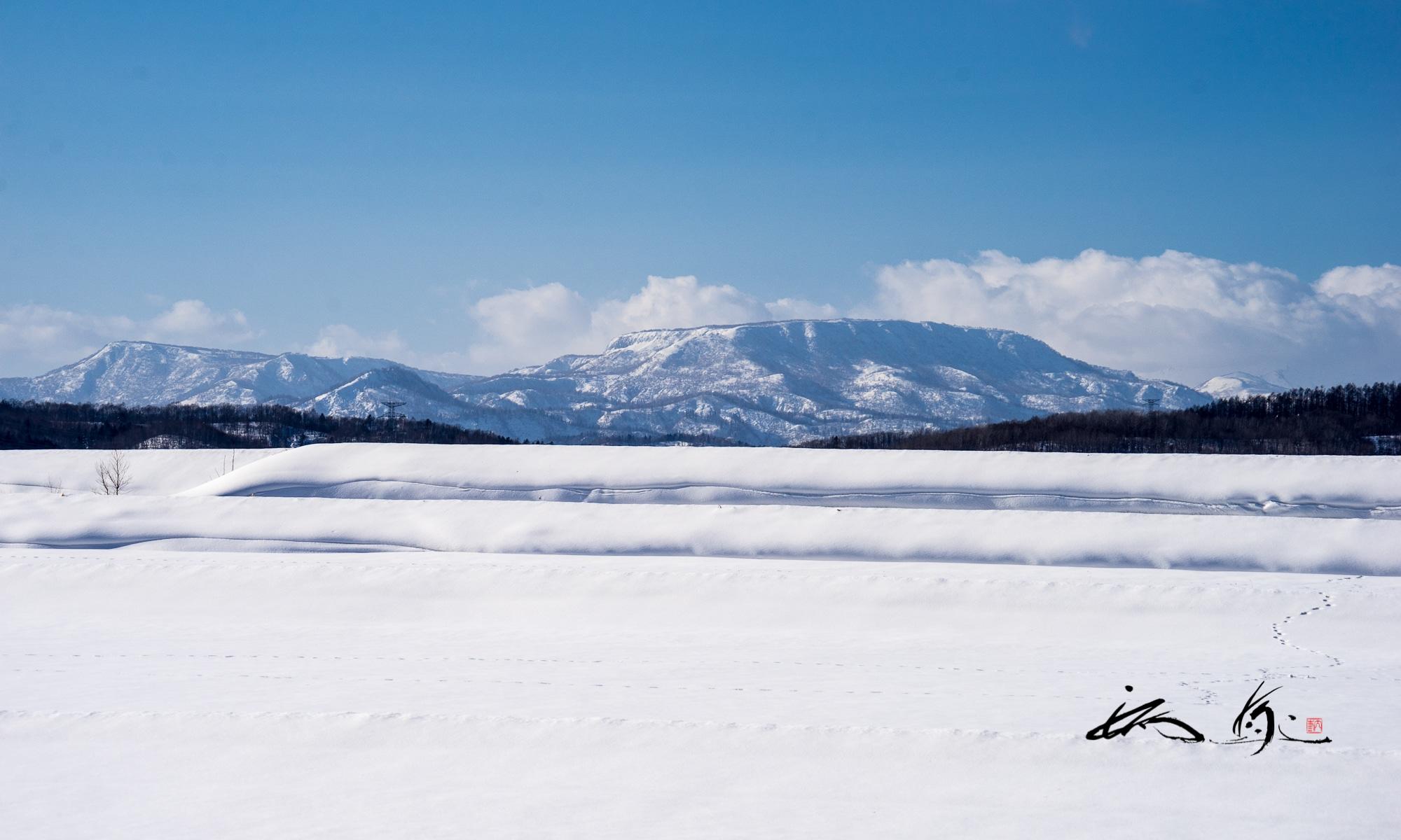 エンジョイ!北海道・Enjoy Hokkaido !