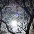 光と影のミステリアスワールド